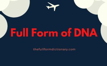 full form of dna